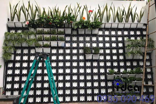 Module trồng cây treo tường