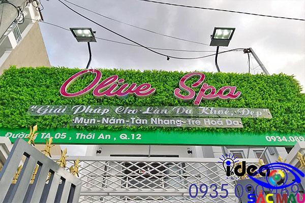 Mẫu thiết kế thi công bảng hiệu quảng cáo bằng cỏ giá rẻ cực đẹp